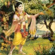 Krishna's whispers and smile
